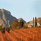 Vergelegen Wine Estate in Somerset West: Wine Estate, Restaurants and award-winning Gardens