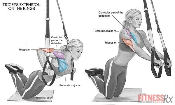Triceps Extensions with Rings - Firm Your Arms