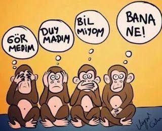 Canan Ekinci YILMAZ: Maymun dört oldu
