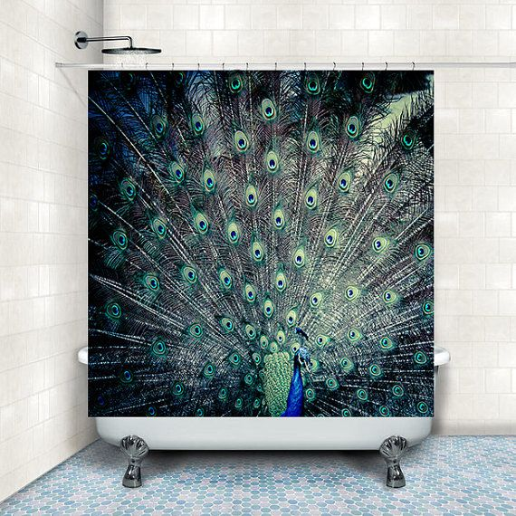 17 best images about peacock bath room on pinterest for Peacock bathroom ideas