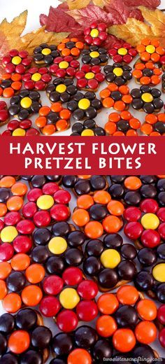 SO perfect to make with the kids!! Our easy to make Harvest Flower Pretzel Bites are yummy bites of sweet and salty Fall Treat goodness.