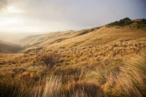 Image result for christchurch nz hills