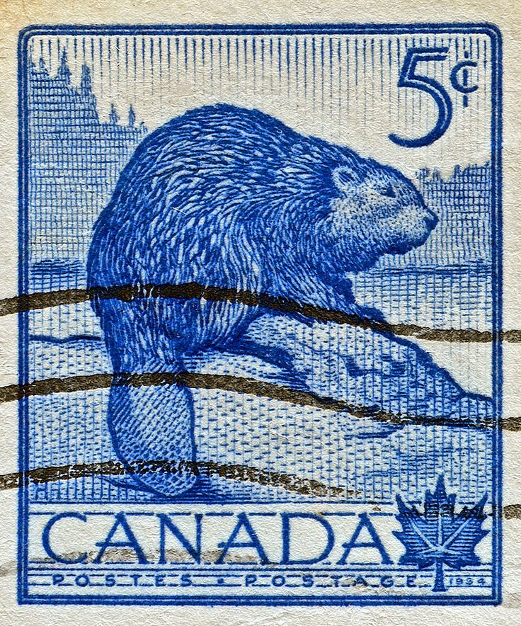 Canada .5¢ Beaver stamp, 1934