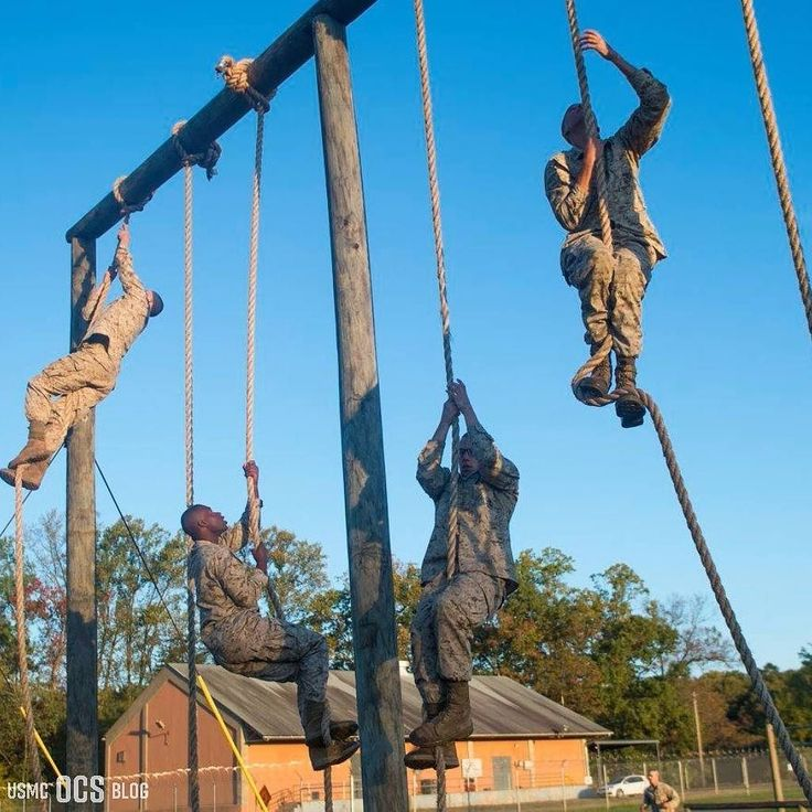 U.S. Marine officer candidates participate in an endurance course at Officer Candidate School Marine Corps Base Quantico Va. Oct. 27 2017. Candidates must go through three months of intensive training to evaluate and screen individuals for the leadership moral mental and physical qualities required for commissioning as a U.S. Marine Corps officer. (U.S. Marine Corps photo by Lance Cpl. Hilario Martinez)  Learn what you need to know about the E-Course here:  http://ift.tt/2hM49Xx
