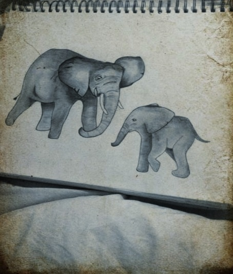 Mamma and baby elephant drawing !