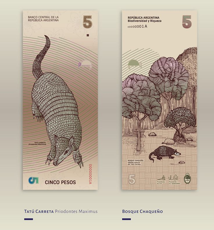 El bello rediseño de los billetes argentinos inspirado en la biodiversidad de su territorio