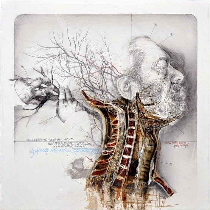 Anatomical Art Explores The Relationship Between Man And Nature http://designwrld.com/nunzio-pacis-anatomical-art/