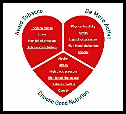 prevention of coronary heart disease essay Coronary artery disease is when the blood vessels leading to the heart harden   supplements for the prevention of cardiovascular disease.