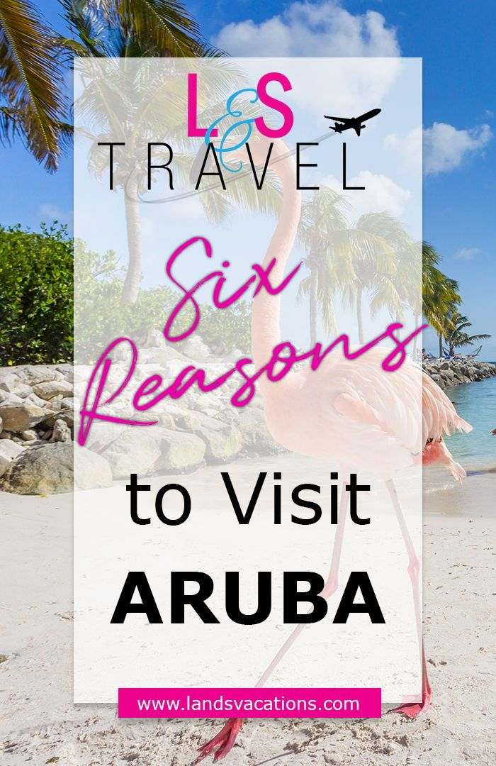 The Top 6 Reasons to Visit Aruba | Visit aruba, Caribbean