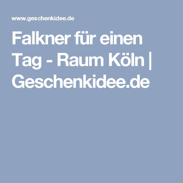 Falkner für einen Tag - Raum Köln   Geschenkidee.de