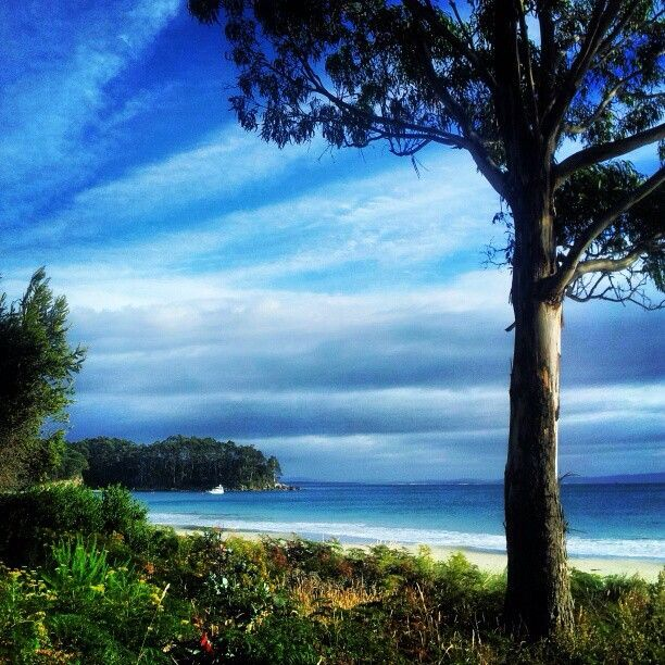 Bruny Island in Tasmania, Australia (Photo by seeaustralia / Instagram)