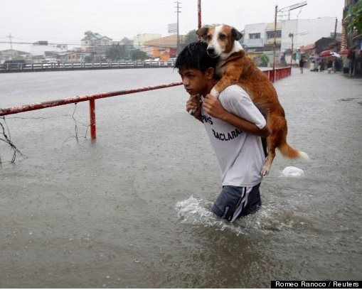 A boy carries his dog through floodwaters in tropical storm Trami, in Manila. Powerful image!