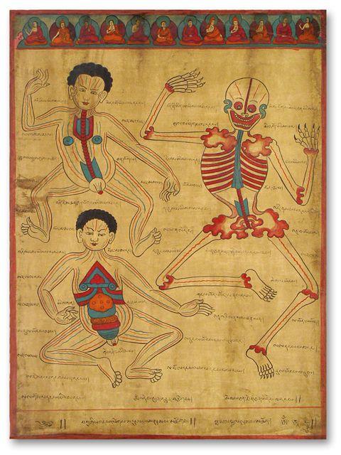 Tibetan medical illustration