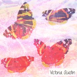 pink iced butterfly digital art