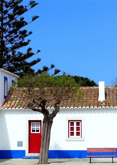 Porto Covo - the traditional country style small houses of Alentejo, with pine, olive and cork trees. #Portugal