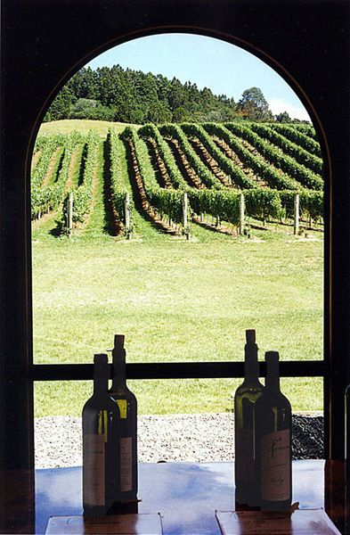 Ascension Winery, a photo from Auckland, North Island | TrekEarth