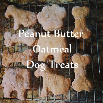 Home made peanut butter oatmeal dog treats for Puppy Bowl X