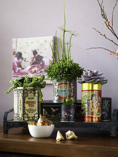 98 besten Blumen und Pflanzen Bilder auf Pinterest