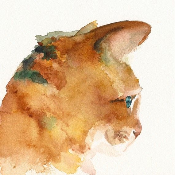 Oliver  Cat Art  archival print of watercolor by amberalexander, $20.00