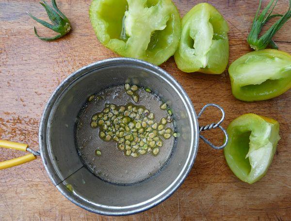 De afgelopen jaren heb ik steeds geprobeerd om tomaten te kweken, maar dat lukte nooit echt helemaal naar volle tevredenheid. Steeds kwam e...