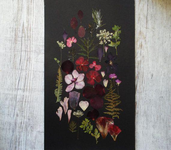 Fine Art collage Botanical art Herbarium artwork by FloralCollage #flowers #herbarium #driedflowers
