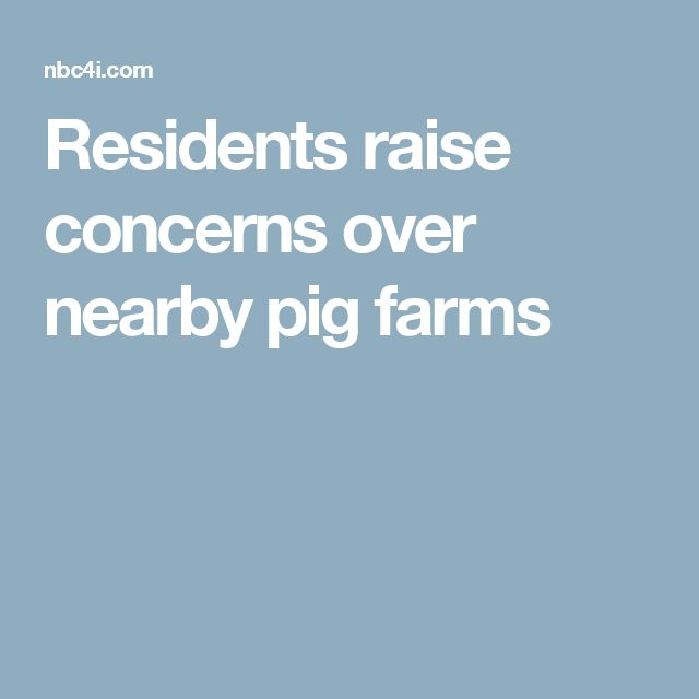 Residents raise concerns over nearby pig farms