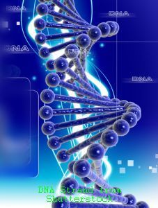 Low Life Satisfaction, Depression Linked to Genetic Influences