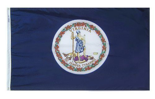 Annin Virginia State Flag 3 by 5 Foot by ANNIN. $32.99. 100% US raw materials. Made in the USA. Durable & Fast Drying. Strong Duck Heading & Large Brass Grommets. 100% SolarMax Nylon. Made to Official State Design Specifications