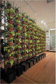 16 best Planting Room Dividers images on Pinterest Cafes Plants