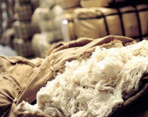 Couettes en Laine - Fabrication Française - Brun De Vian-Tiran Couettes en Laine - Fabrication Française - Brun de Vian-Tiran   Couettes d'été ou couettes d'hiver, en laine, soie, ou bien coton, les couettes Brun de Vian-Tiran vous apportent confort et bien-être pendant le sommeil, dans un microclimat sain.