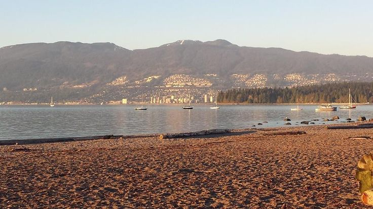 I moved to Canada from Iran in 1980 where I lived in Victoria and Vancouver, BC. We moved around a fair amount until my family settled in West Vancouver. At one point I counted having gone to 9 different schools between K-12.