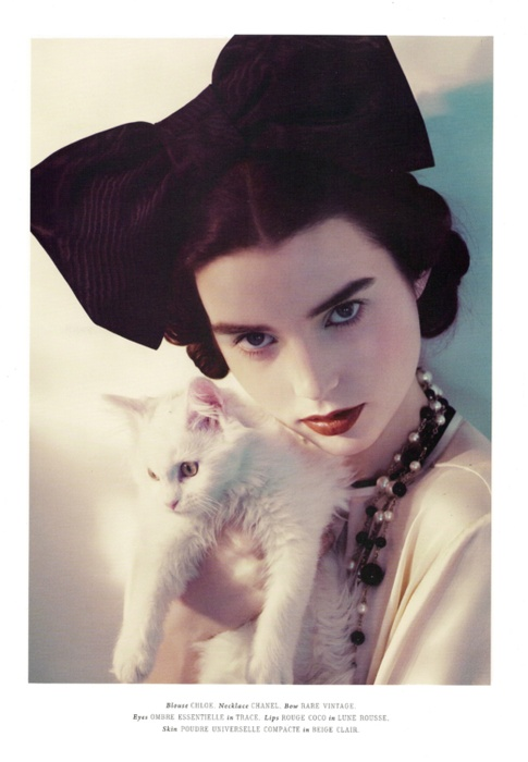: Catherine Servel, Fashion Magazines, Fashion Editorial, Big Bows, Cat Lovers, White Cat, Cat Photos, Ali Michael, Vintage Style
