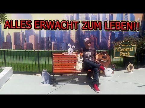 UNIVERSAL STUDIOS wir KOMMEN! | ChrisCross - YouTube