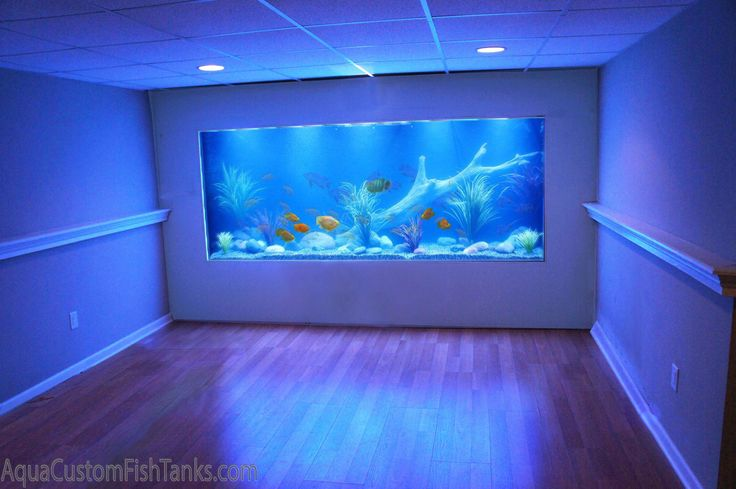 Aqua Creations - Custom Aquarium Wall Fish Tank built into the wall of a residential family room in New York. This fresh water Cichlid Fish tank is designed with a lake / river scene. This 1000 Gallon fish tank has the WOW factor the client was looking to achieve. Custom Designed, Built and Installed by Aqua Creations of Lakewood NJ see more at www.aquacustomfishtanks.com