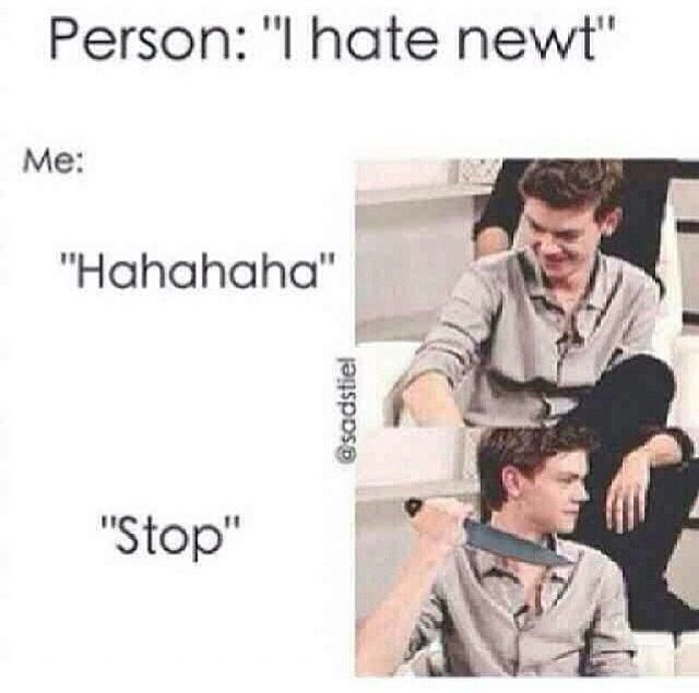 NOBODY HATES ON MY NEWT<< correction: OUR Newt