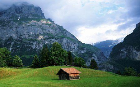 Красивые фотографии природы, летние снимки..