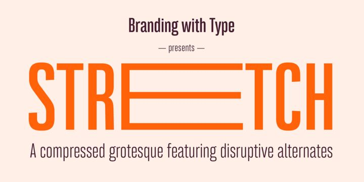 Bw Stretch - Webfont & Desktop font « MyFonts