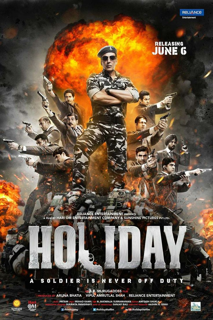 A military officer attempts to hunt down a terrorist, destroy a terrorist gang and deactivate the sleeper cells under its command.