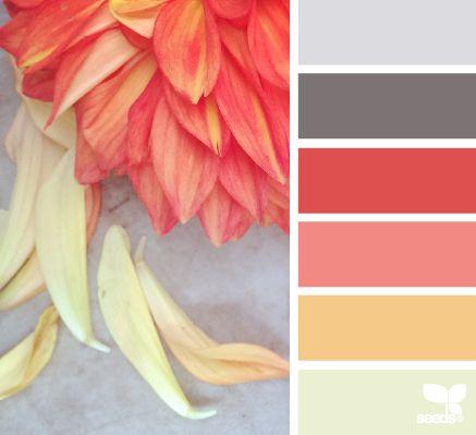 petalled hues- basement color palette