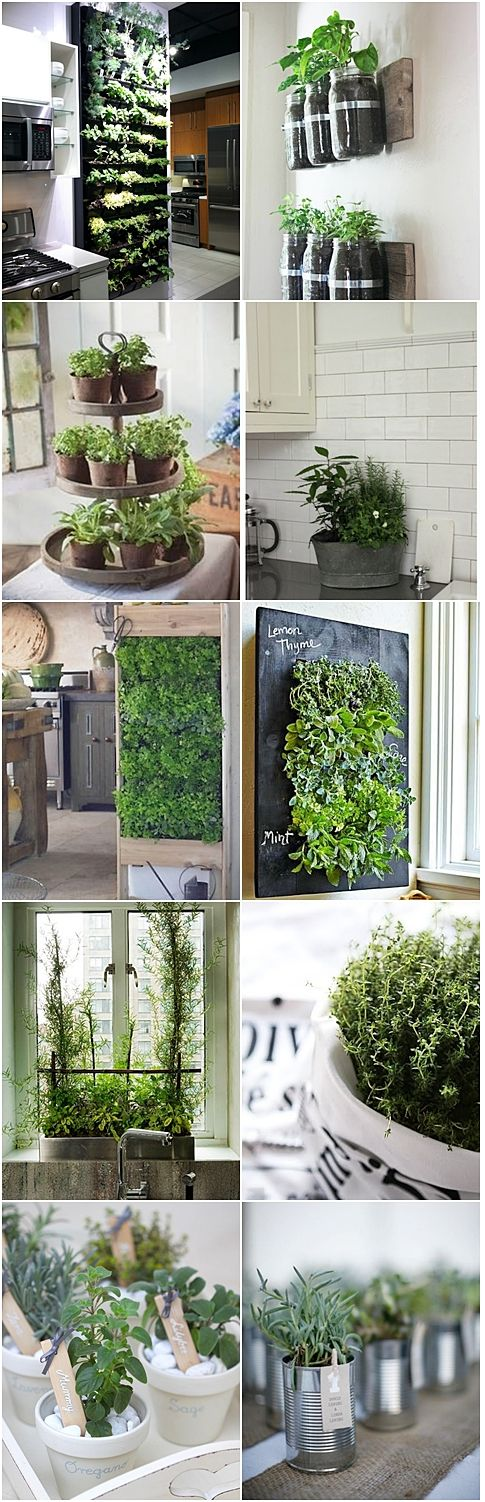 how to make a herb wall