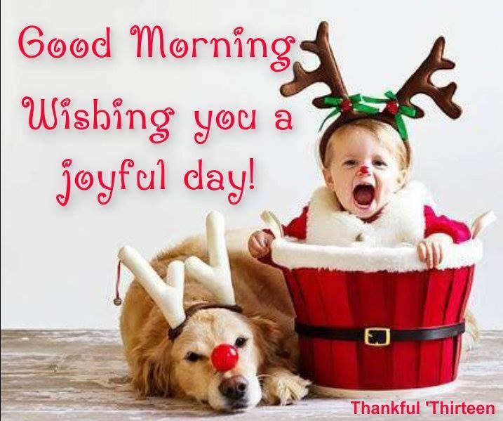 Good Morning Seasonal More
