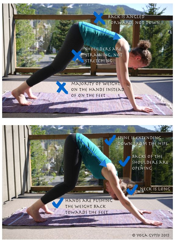 Yoga Tip Tuesdays: Downward-facing dog with bent knees