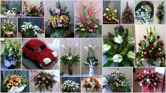 Les Fleurs de ma vie: Sympathie.  Belle Fleur Sheena