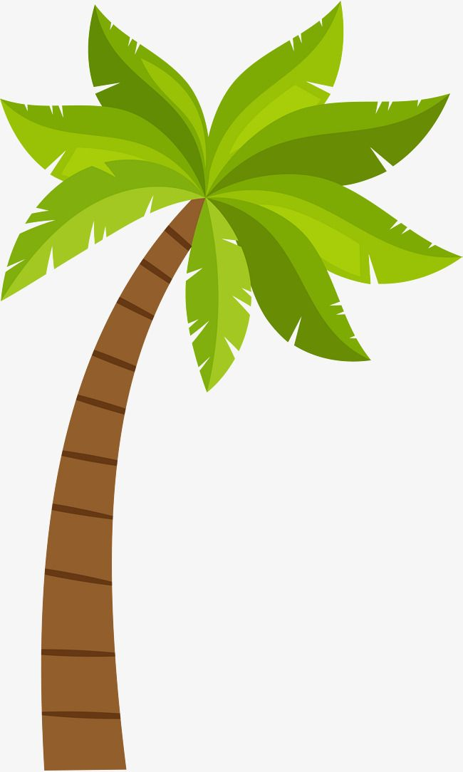 Cartoon Coconut Tree Pattern Png And Clipart Tree Patterns Tree Clipart Coconut Tree