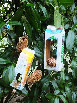 DIY for birds in winter