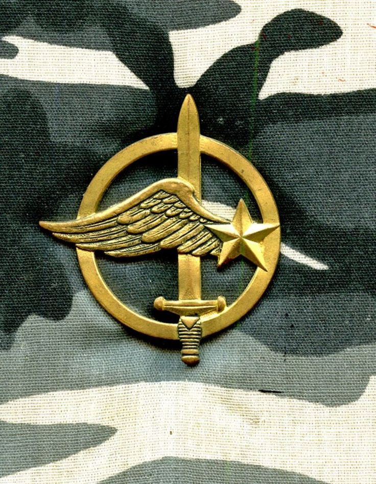 Préférence 244 best Special Unit Insignia images on Pinterest | Special  EL91
