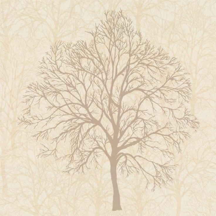 Graham Brown Enchant Trees Wallpaper Blonde Cream Gold - Brown and cream wallpaper