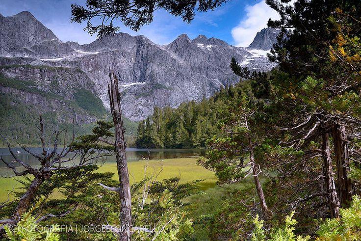 Lago Quetrus - Parque Tagua Tagua (Patagonia - Chile)