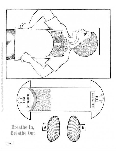 Easy Make & Learn Projects: Human Body