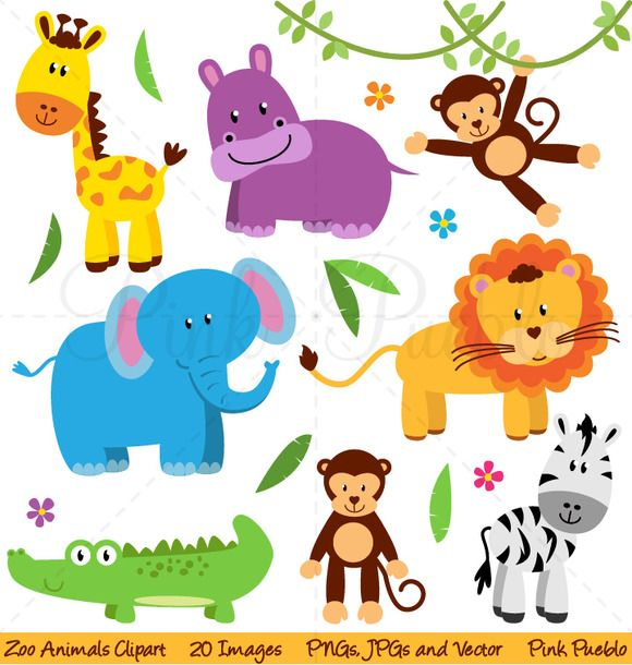 Zoo, Jungle or Safari Animals by PinkPueblo on Creative Market